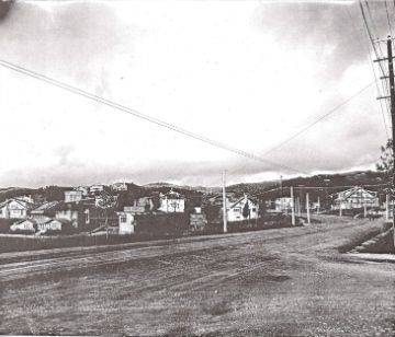old picture of park blvd.